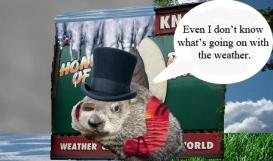 Groundhog-Day 2013
