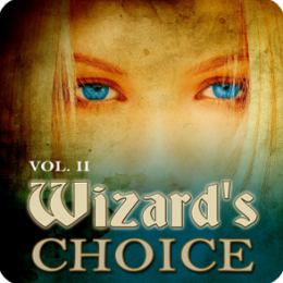 Wizard's Choice Volume 2 pic